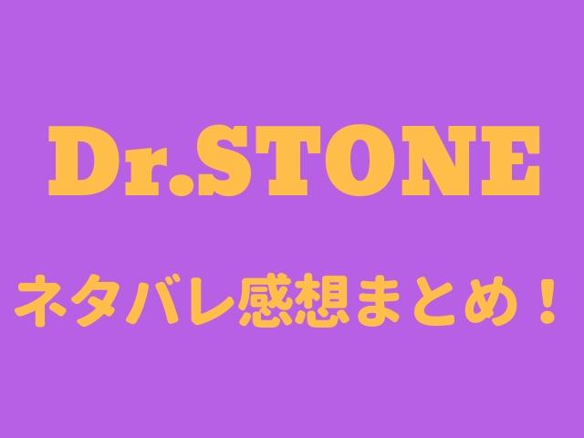 ドクターストーン ネタバレ110話の感想「美しい科学」